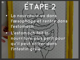 etape-2